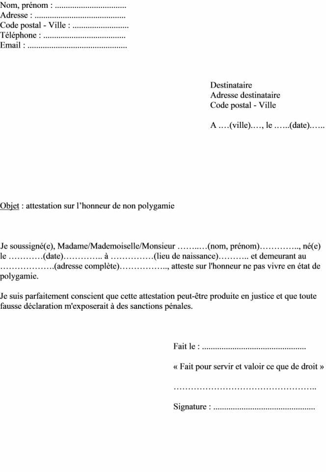 attestation sur l'honneur d'absence de ressources - Modele de lettre type