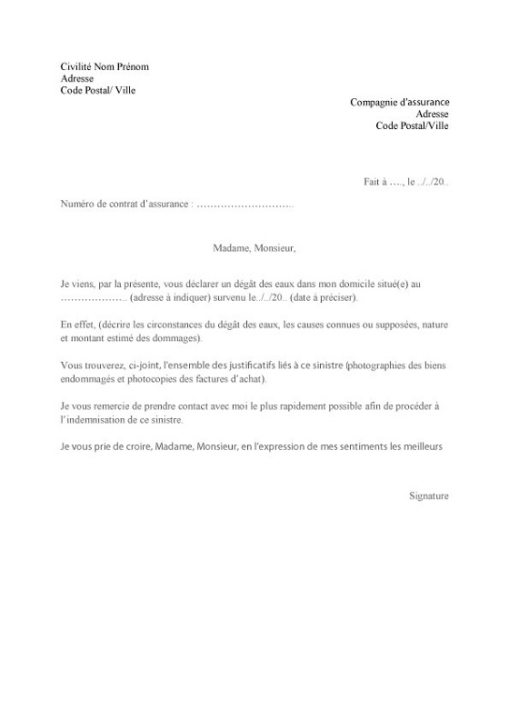 exemple de declaration d'accident