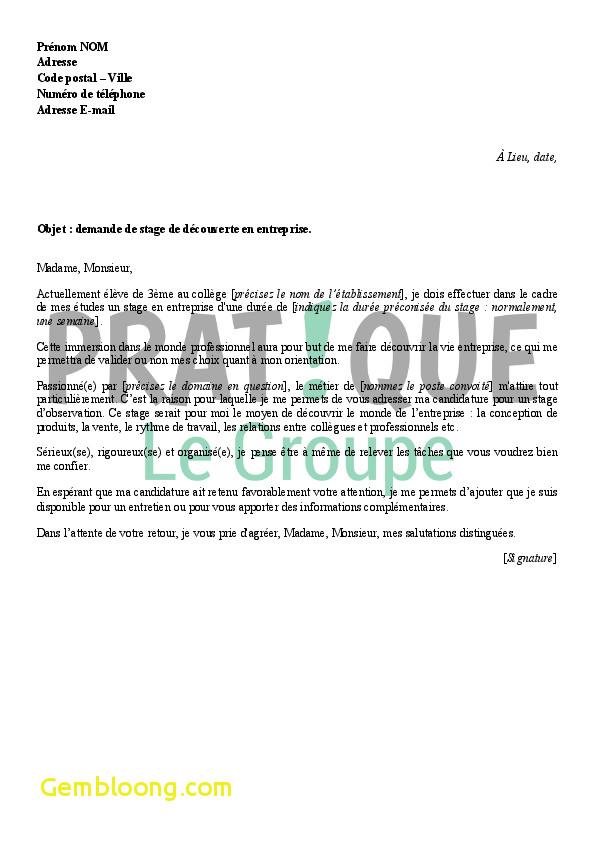 Exemple De Demande De Stage Esat / Demande De Stage ...
