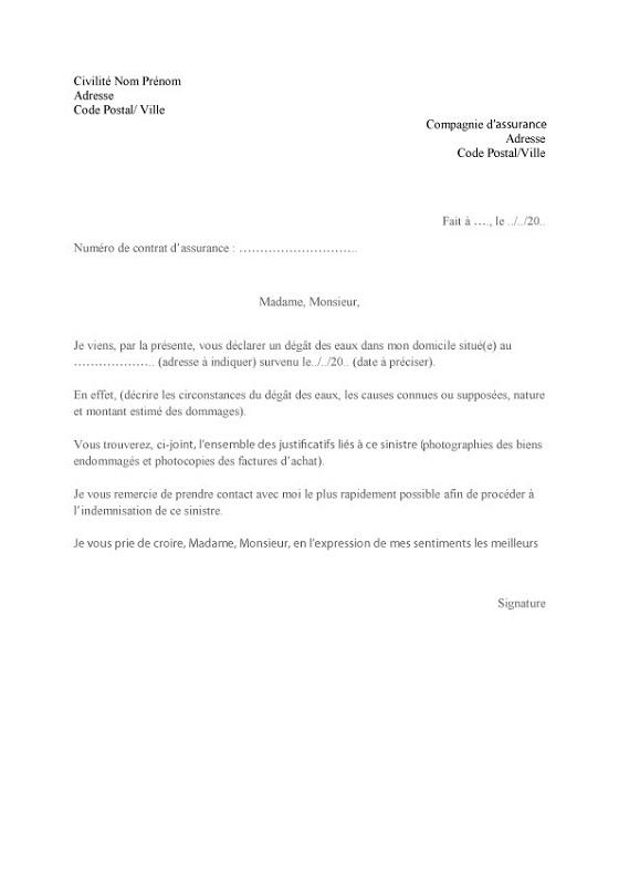 modele de lettre de declaration