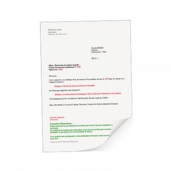 modele declaration de sinistre responsabilite civile - Modele de lettre type